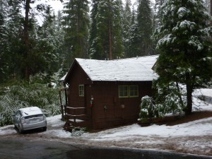 Overnight snow on my cabin and car